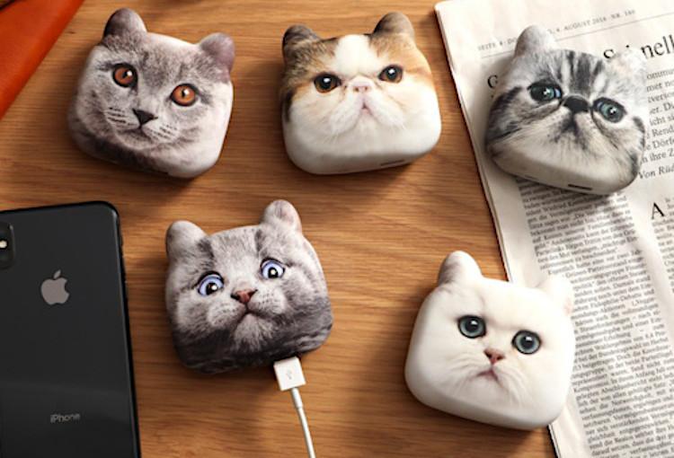 日本推出「萌貓行動電源」連毛感都完美複製 其中一隻「表情太ㄎㄧㄤ 」被搶到缺貨!