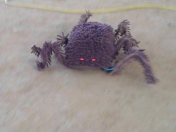 影/推特瘋傳「大蜘蛛亂入遙控車比賽」畫面 網仔細放大「驚奇生物構造」後傻眼:不是活的!