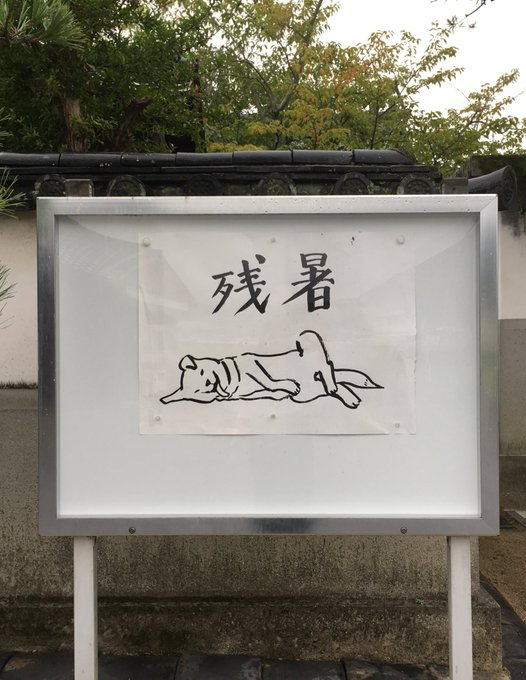 他看到路邊告示牌畫著「狗狗倒地」畫面 回頭瞄「自家笨柴」秒笑翻:是影帝!