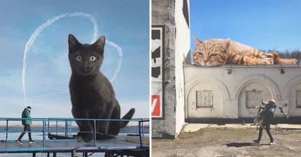 他畫出「貓咪巨大化」的世界 萌喵變「貓吉拉」粉絲全瘋了:想騎!