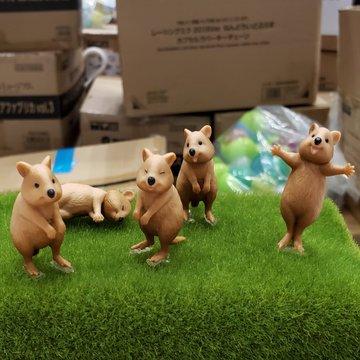 短尾矮袋鼠「合照雷神」爆紅!日推「超萌討抱」系列扭蛋 網暴動:5款都必須收❤