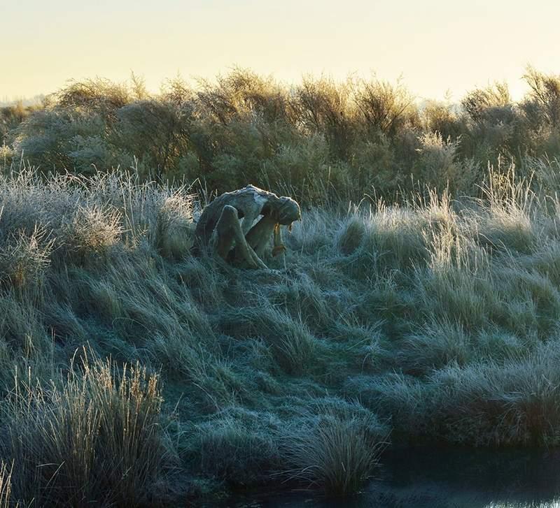 沼澤邊驚見「真實版催狂魔」?網近看發現「超催淚真相」嚇壞:人類該反省了…
