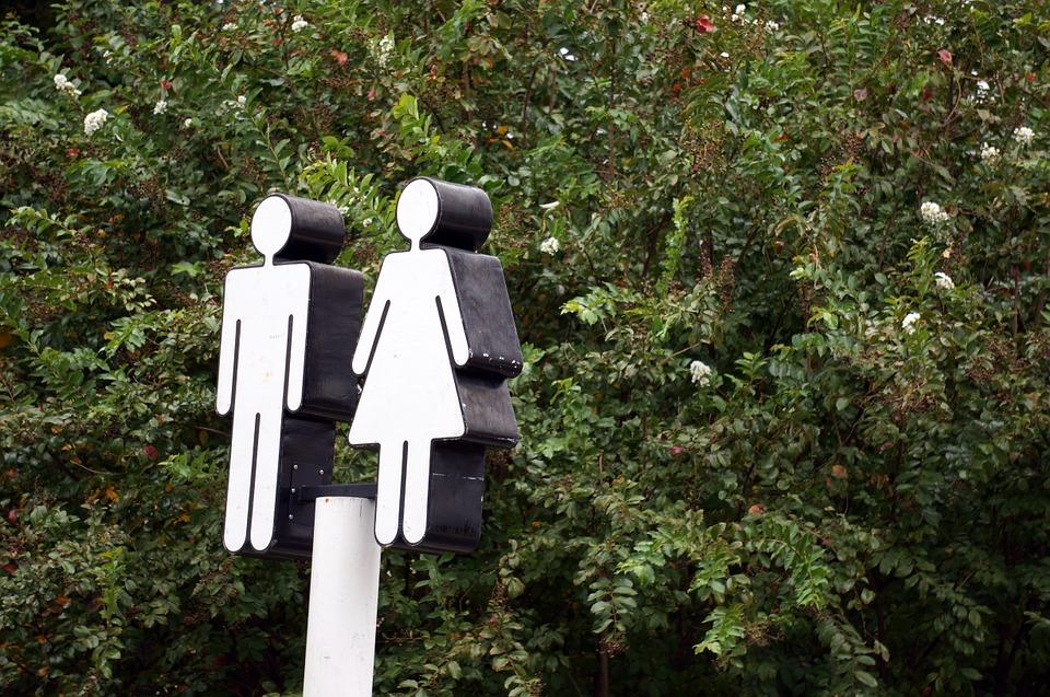 日本廁所看見「大象、長頸鹿」傻傻分不清!內行人揭「標誌背後用意」網驚:長知識了