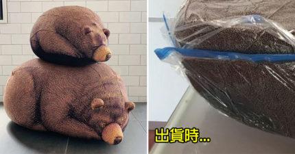 日推超萌「熊熊懶人沙發」被搶瘋 「實際出貨版」讓網超傻眼!