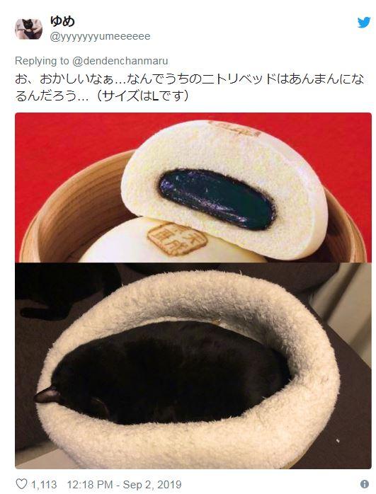 日推「讓寵物們暖暖過冬」的浴缸棉床 貓皇「懶洋洋睡着畫面」奴才全暴動:馬上下單!
