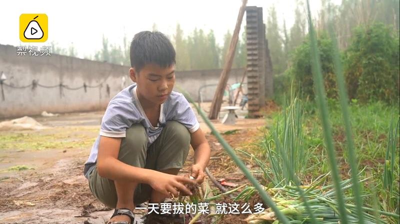 影/11歲男孩賣菜「賺醫療費」救弟弟 每天上學「兼職農作」生活超辛苦…連骨髓都捐了!