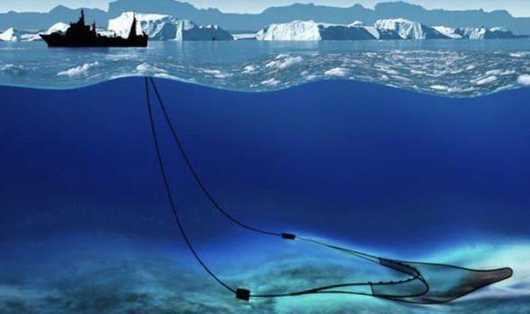 南極冰下3500公尺驚現「超怪異透明生物」!科學家驚恐:之前從沒有見過