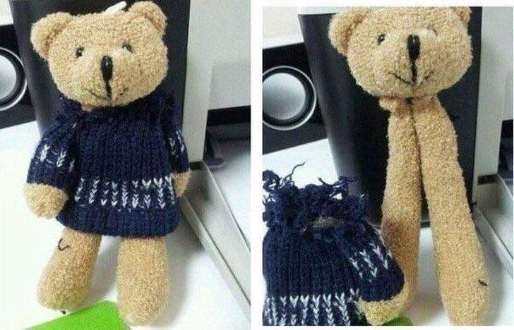 22張「懷疑自己是不是地球人」的驚奇照片 把泰迪熊的衣服換下…身體瞬間只剩「2條腿」!