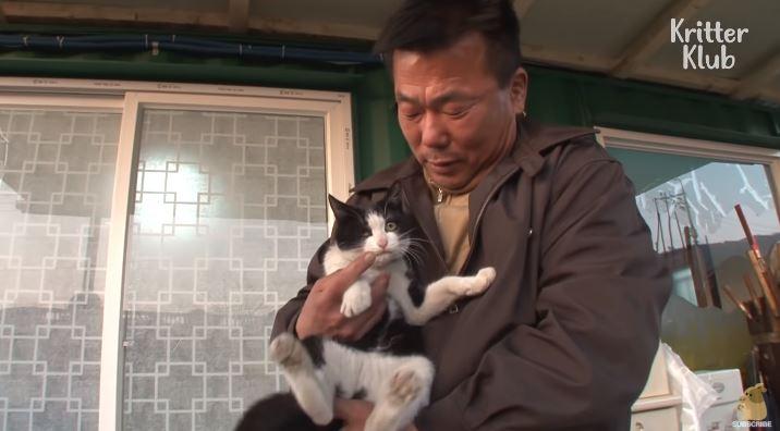 暖大叔餵賓士貓被「主動求收編」 某晚牠衝回火場「死守苦叫」救恩人一命