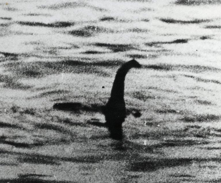 尼斯湖水怪真身曝光!科學家找到「DNA碎片」揭露神秘真相:原來是巨大鰻魚?