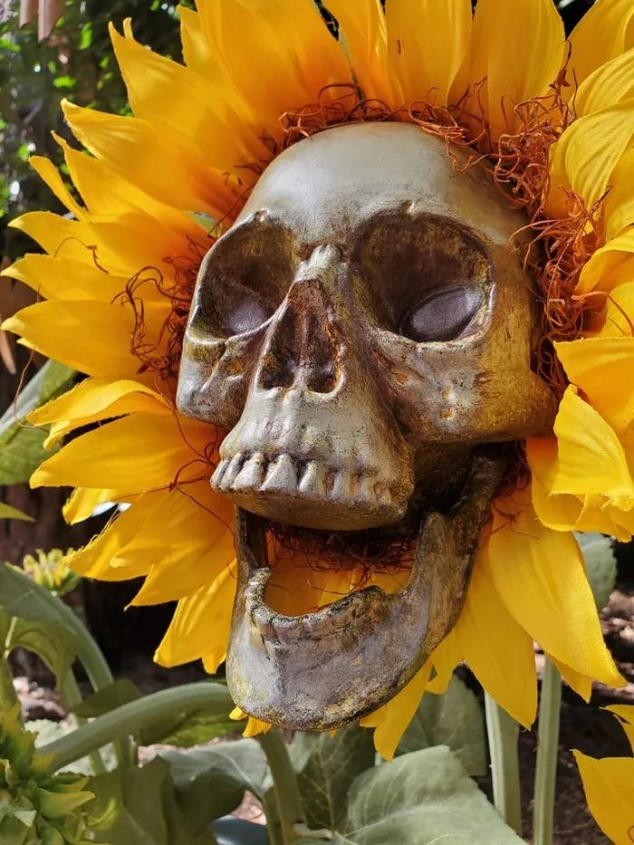 藝術家打造「骷髏向日葵」超費工 「亮燈那刻」才知道一切都值得!