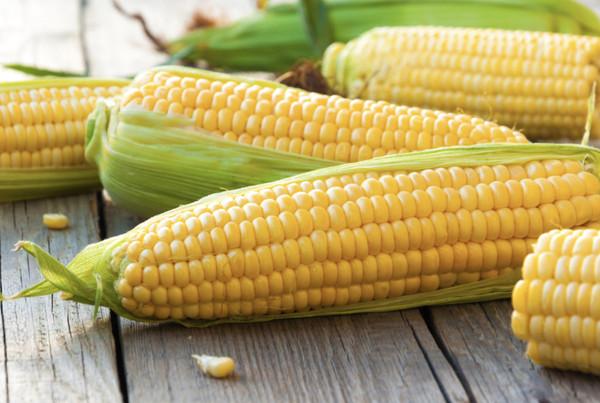 這是間諜玉米?日本瘋傳「長得像拉麵」的玉米 真實身份曝光:地位很獨特
