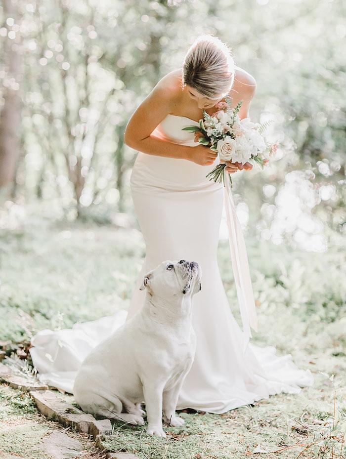 調皮狗「亂入婚紗照」意外變焦點 牠終於「變乖拍全家福」瞬間被萌翻❤