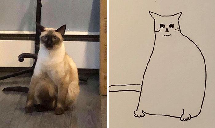 她當了「25年畫家」都無人賞識 隨手畫寵物就「醜到爆紅」網暴動:拜託畫我!