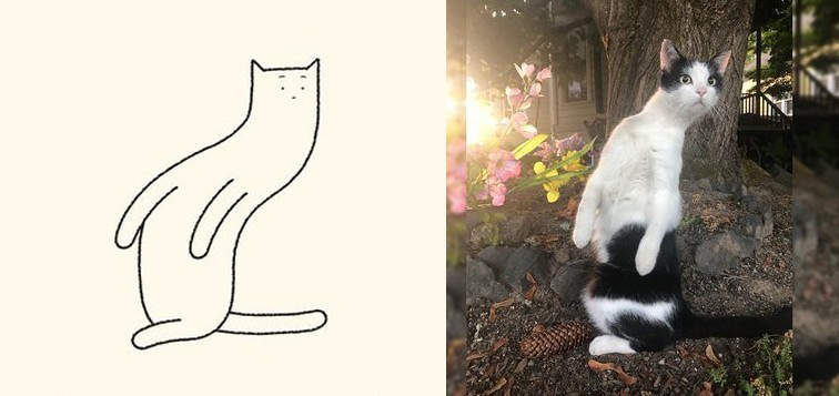 神人「用幾條線打造搞笑版貓咪」 牠化身詭異「獨角貓」...神還原喵星獵奇POSE!