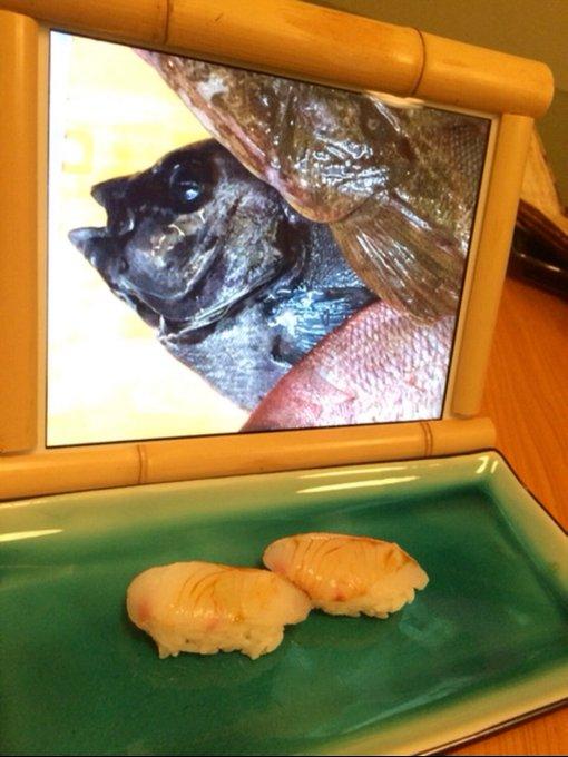 點生魚片附iPad?壽司店請客人欣賞「魚生前模樣」引關注 網體驗後崩潰:根本吃不下