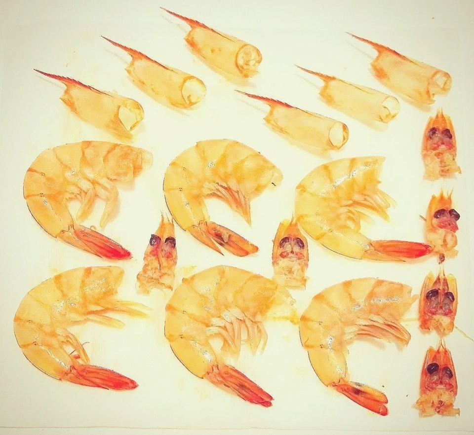 蝦界法醫?天蠍妹把剝蝦當樂趣 超狂作品集「頭身尾完美分離」!網:有缺朋友嗎
