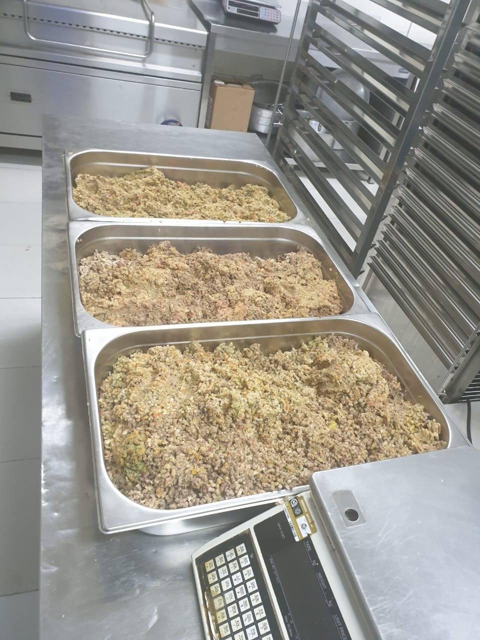 每天丟百斤食物!五星大廚每天「自願加班」回收 把「剩菜→狗食」被讚爆:謝謝你QQ