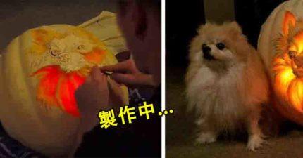 神人打造超猛「博美犬南瓜雕刻」 跟真狗狗放在一起超神似...關燈後美炸!