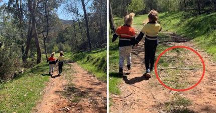 她拍下「兄妹溫馨散步照」卻有驚人發現 男孩腳邊竟「藏著致命生物」:差點沒命