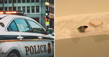 警察抓小偷「鳥停肩上」一起被抓 拘留室照「幫上黑條」保護小鳥隱私