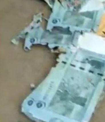影/鈔票藏家中卻「被白蟻啃食」 網看「紙鈔破爛模樣」全崩潰!