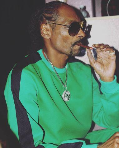 史奴比狗狗開年薪150萬聘「捲大麻專員」 每天只要幫他捲菸還可一起抽
