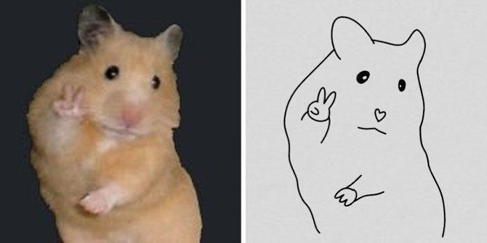 37張神還原毛孩表情「真的長一樣欸」超簡單線條畫!神人一筆畫出「驚恐小倉鼠」太爆笑
