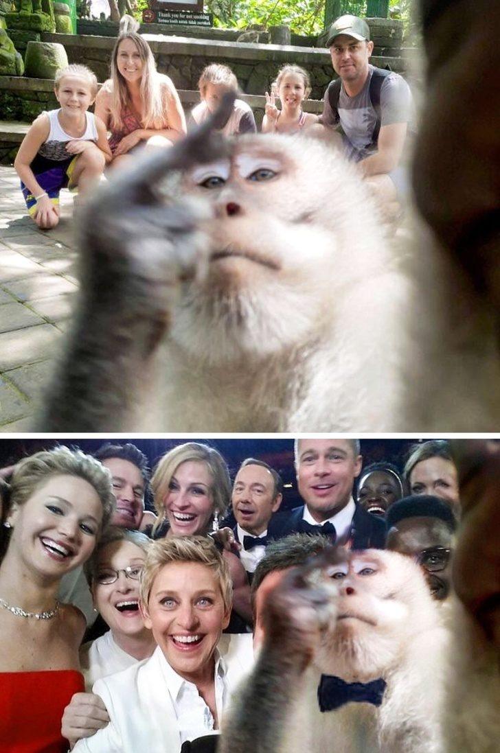 15張「拜過PS大神」的爆笑修圖作品 世界最知名自拍被「中指猴」亂入!