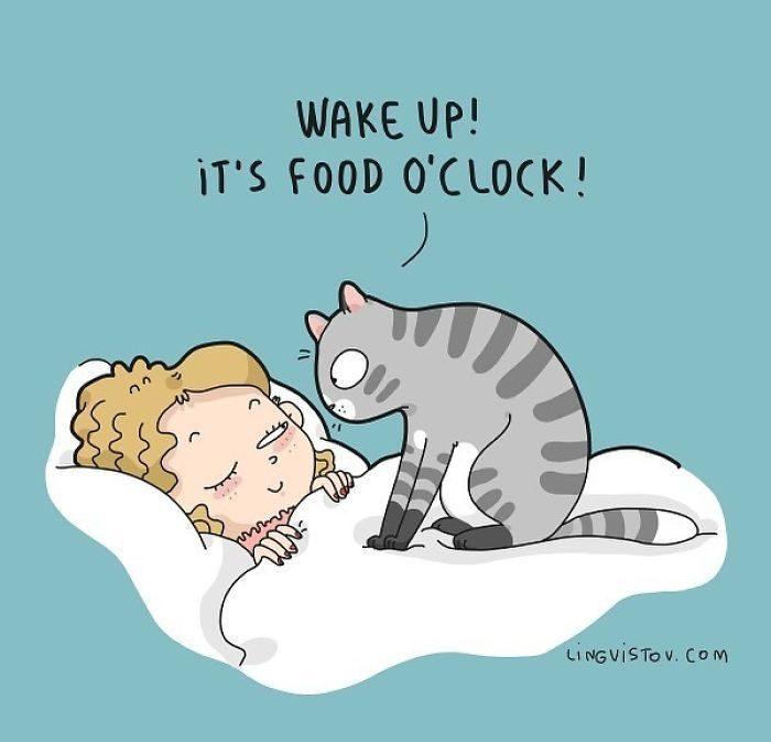 16張貓奴才懂的「痛並快樂著」爆笑日常 貓奴的手機一定跟其他人不同!
