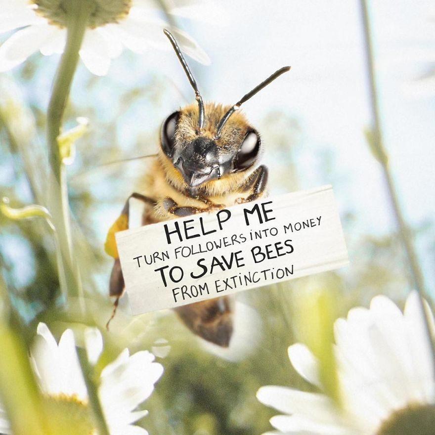 超可愛「蜜蜂網美」崛起粉絲爆增 每天狂發網美照立志「拯救蜜蜂同伴」