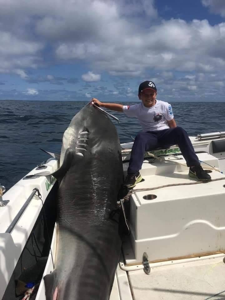 8歲男童釣到「314公斤大虎鯊」刷新記錄 網傻眼:怎麼辦到的?