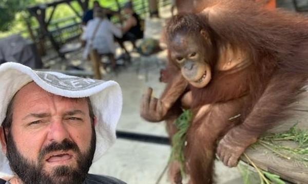 他拍照時「猩猩在身後比中指」網友笑翻 專家卻揭開「超心碎真相」怒:人類是主謀!