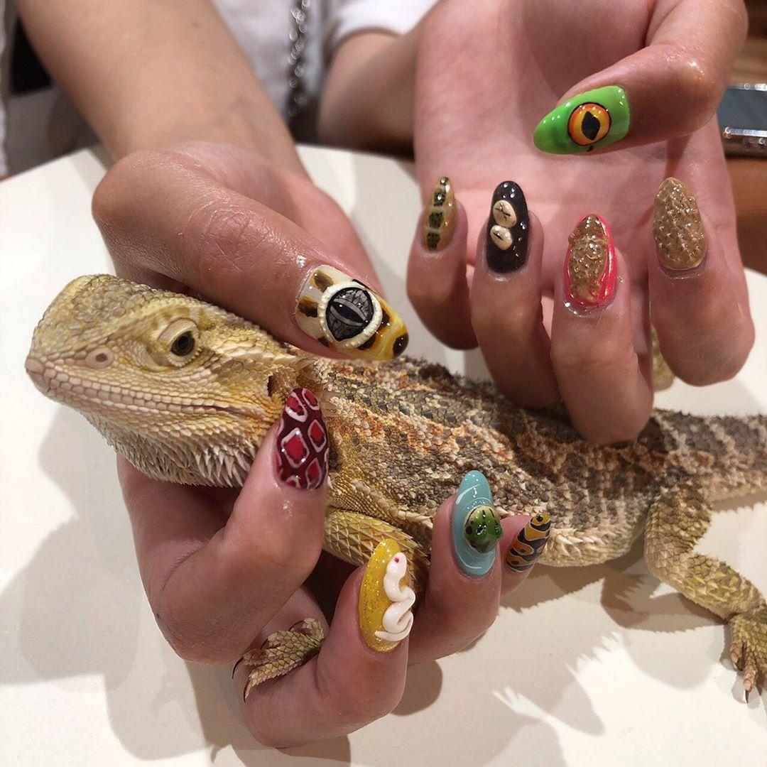 壁虎控做出「立體爬蟲美甲」超逼真 神還原「皮膚紋路+觸感」網嚇壞:牠在盯著我!