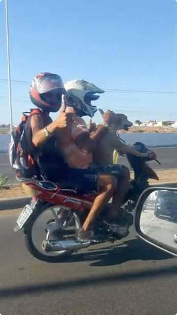 呆萌狗「騎機車載主人出遊」影片被瘋傳 牠全程「超專業技術」讓網看傻眼!