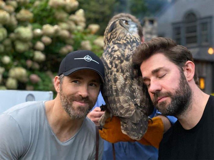 萊恩雷諾斯將「烏龜取名為巨星」笑翻全網 下秒竟「釣出本尊合照」粉絲超驚喜!
