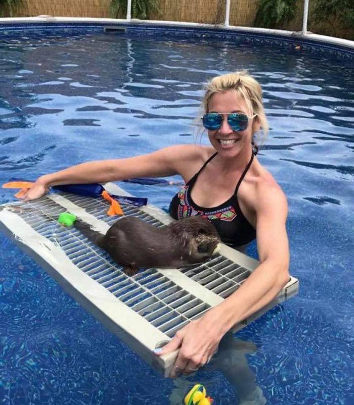 野生保護區開放「跟水獺游泳」超療癒 民眾瘋搶「跟牠親密接觸」一天只游一次!