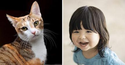 2歲女兒不經意說出「貓飼料不好吃」 媽嚇壞拿舊照片...她秒指:我是這隻!