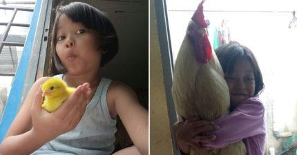 政府為了減少低頭族…決定用「養小雞」代替滑手機 曝光「誇張成效」小孩超愛!