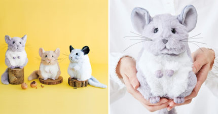 超萌「絨毛絲鼠」化妝包 「肉球設計」被讚翻:100%還原!