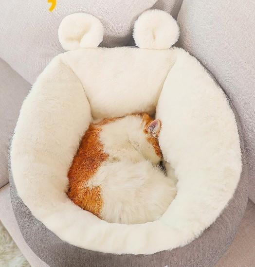 奴才必收「貓咪專用懶骨頭」超軟萌 貼心設計「整隻塞進去」網瘋搶❤