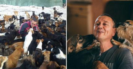專收人家不要的!暖男「養750隻狗」不收政府一毛錢:人類太不負責