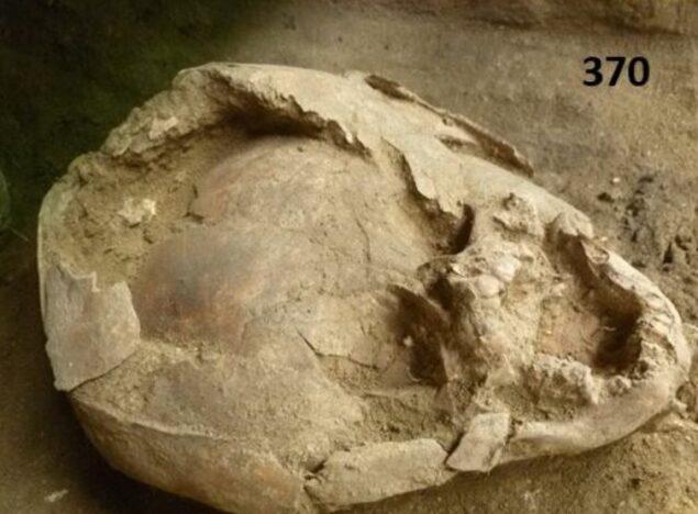 考古學家挖出「古老墓穴」發現驚人景象 嬰兒竟戴著「新鮮頭骨頭盔」下土!