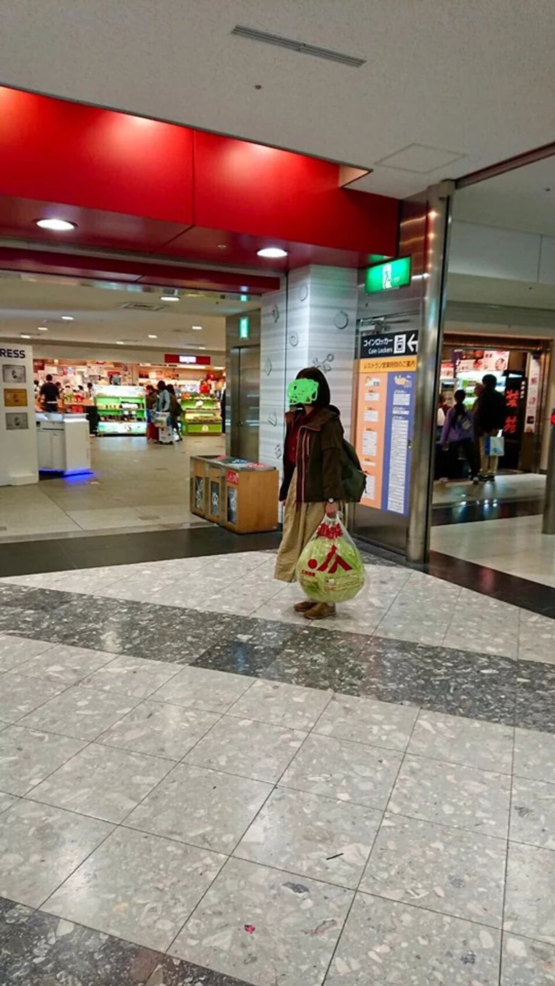 超狂妹遊北海道「只帶一個紀念品」回家 路人看到「超巨畫面」傻眼:竟然是高麗菜!