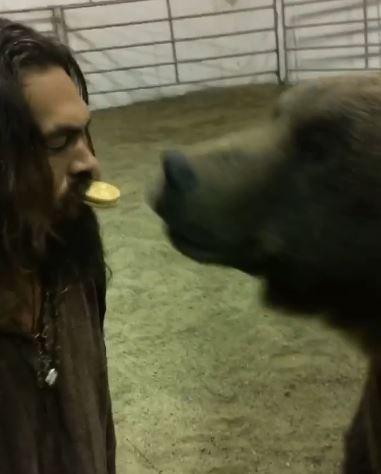 影/「水行俠」傑森摩莫亞被罵翻!他叼餅乾餵「4百斤大灰熊」網狂灌留言:讓牠回大自然…