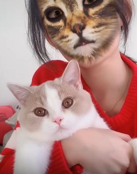 影/網瘋傳「人臉→貓臉」搞怪APP 喵星人嚇到「瞳孔放大」回頭確認超爆笑!