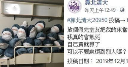 他的床被「23隻鯊魚」霸佔氣炸 腦洞網友幫取名「鯊死給」超爆笑!