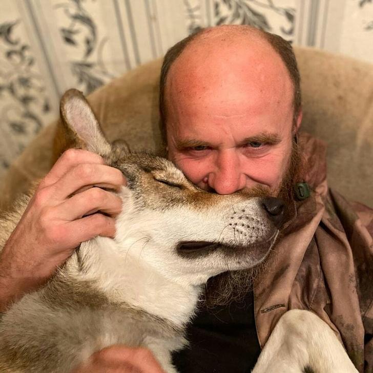 暖爸見「幼狼變孤兒」心軟收編 照顧2年「變最親密家人」還會抱著一起睡覺❤