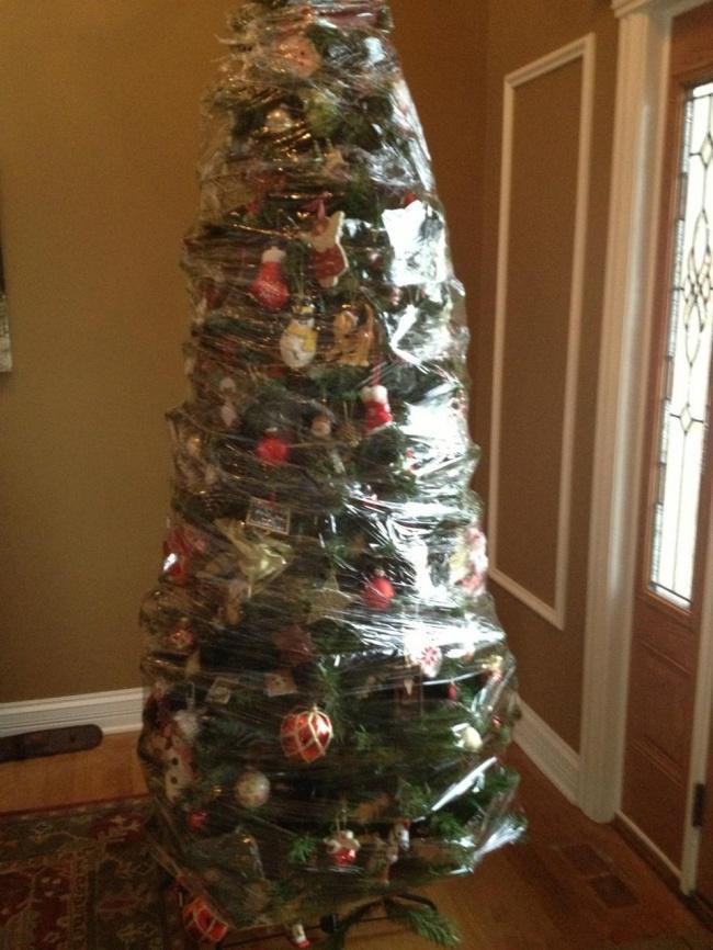 8個「防止毛孩入侵」的爆笑聖誕樹保衛法 直接把樹「黏在天花板」最有用!