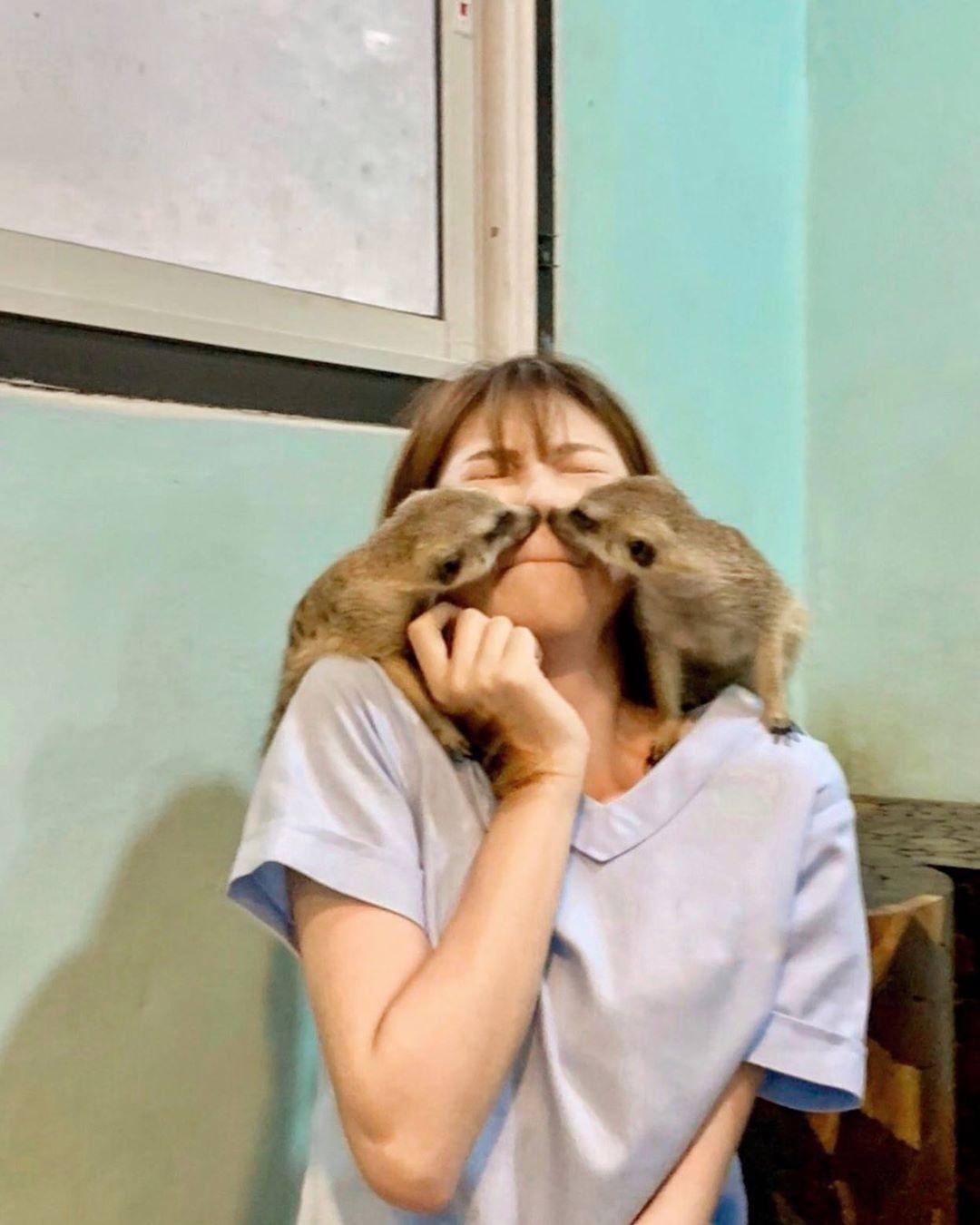 清新正妹被封「獸醫女神」連野生猛獸都被迷倒 網友心動:想投胎當動物